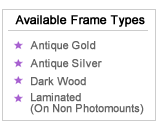 Available Frame Types